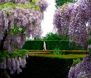 Экскурсию в Сады замка Сисенхерст и Рай